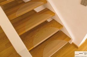 Treppenstufenmatten aus MAKROLON (halbkreis 60 cm breit & 22,5cm tief)